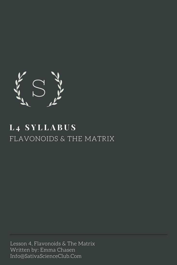 S2L4 Syllabus.png