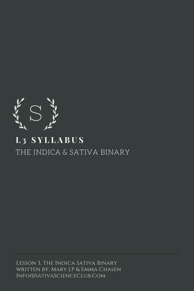 S1L3 Syllabus.png