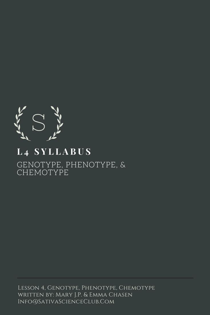 S1L4 Syllabus.png