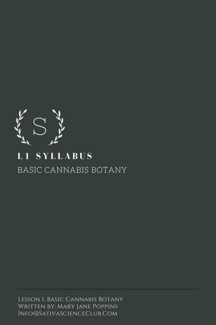 S1L1 Syllabus (1).png