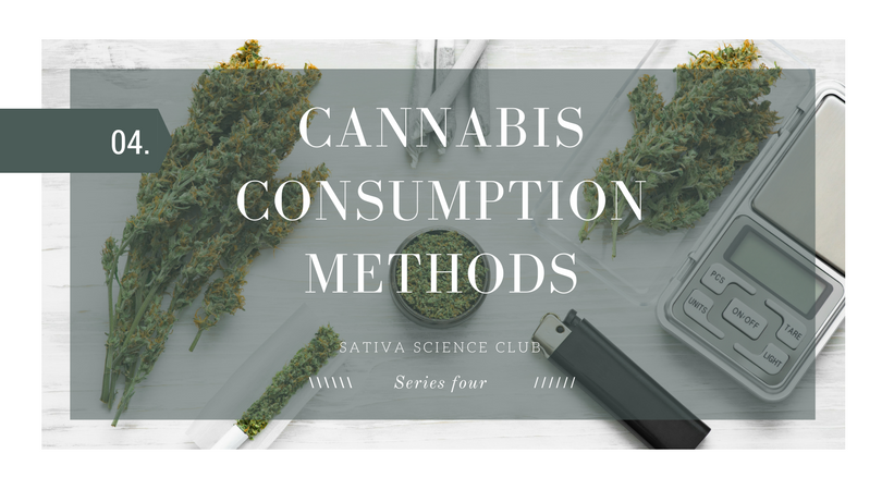 cannabis-consumption-sativa-science-club.png