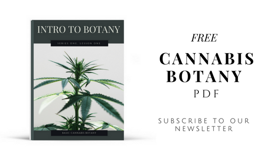 free-cannabis-botany-pdf.png