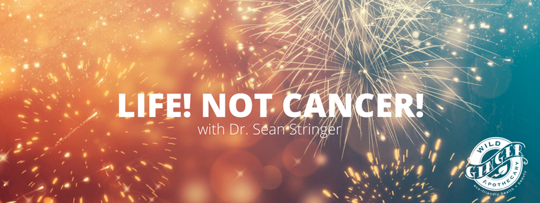 Life Not Cancer alternative cancer natural remedies with Doctor Dr. Sean Stringer at Wild Ginger Apothecary in Sarasota Florida