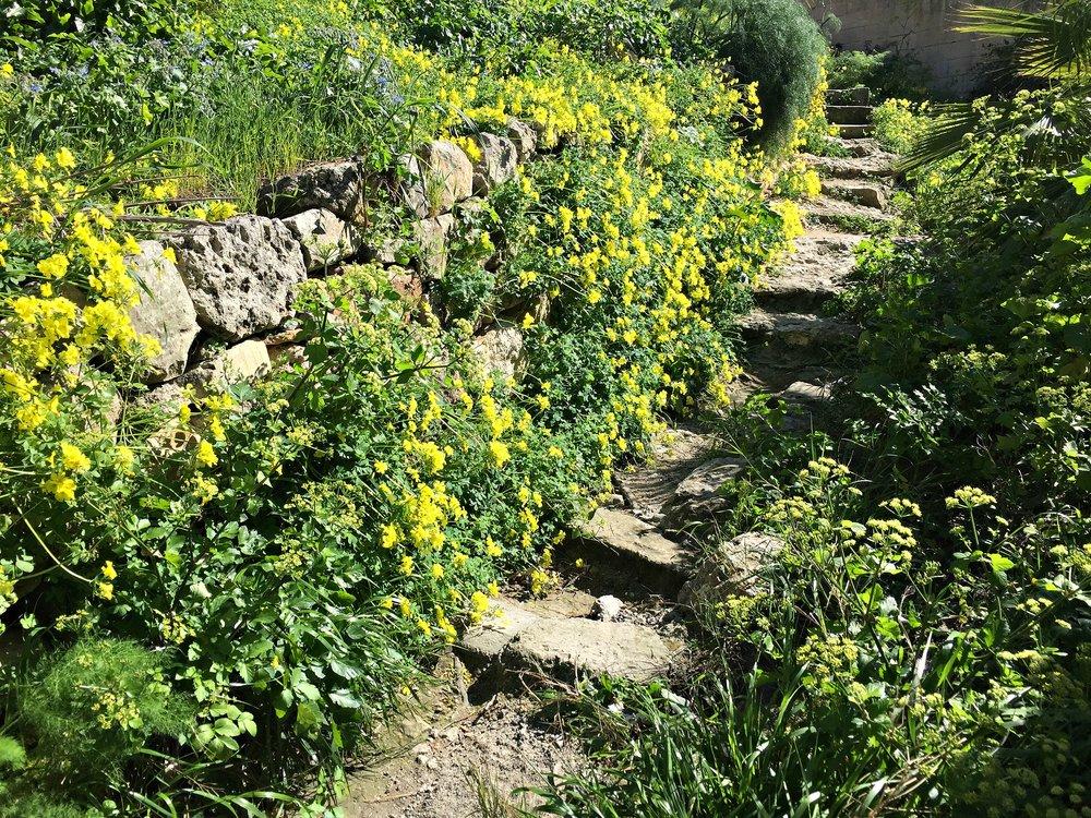 Steps to Wied il-Ghasel