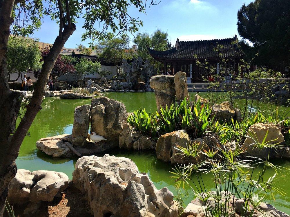 chinese garden of serenity malta view