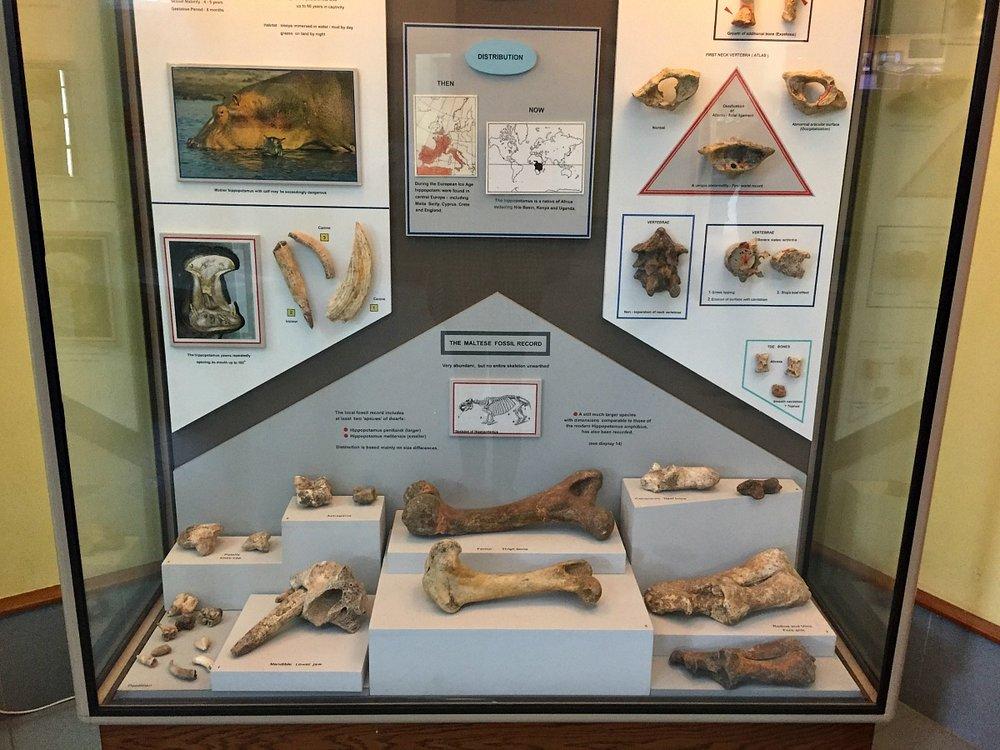 ghar dalam museum malta