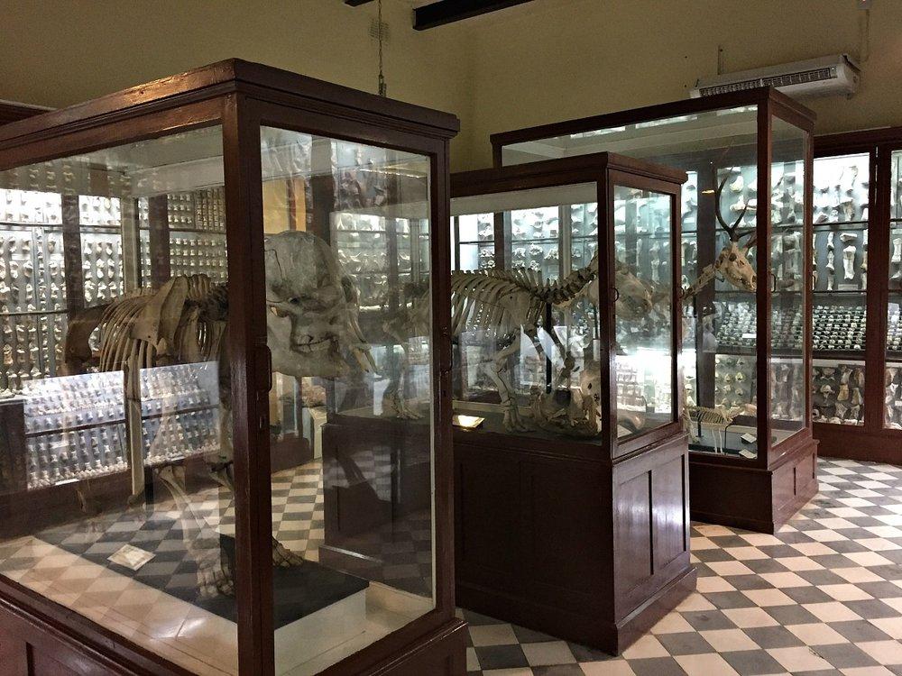 ghar dalam museum old exposition