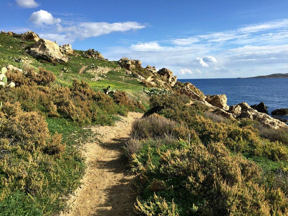 nature coastal walk in gozo