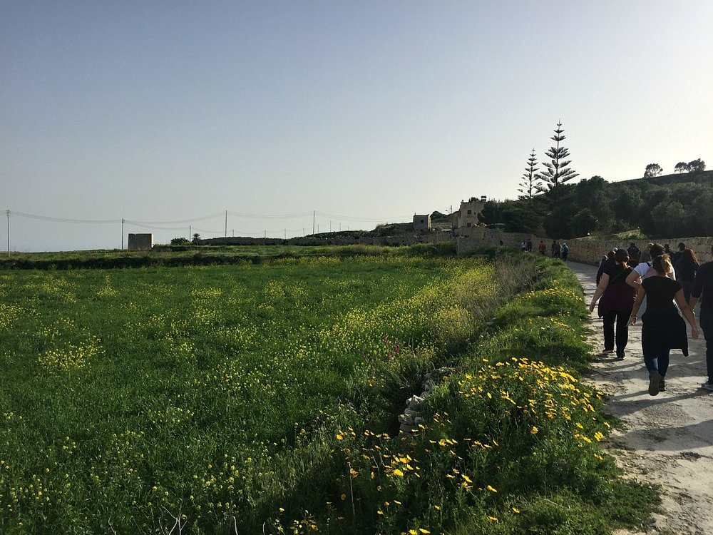 walking in the maltese countryside