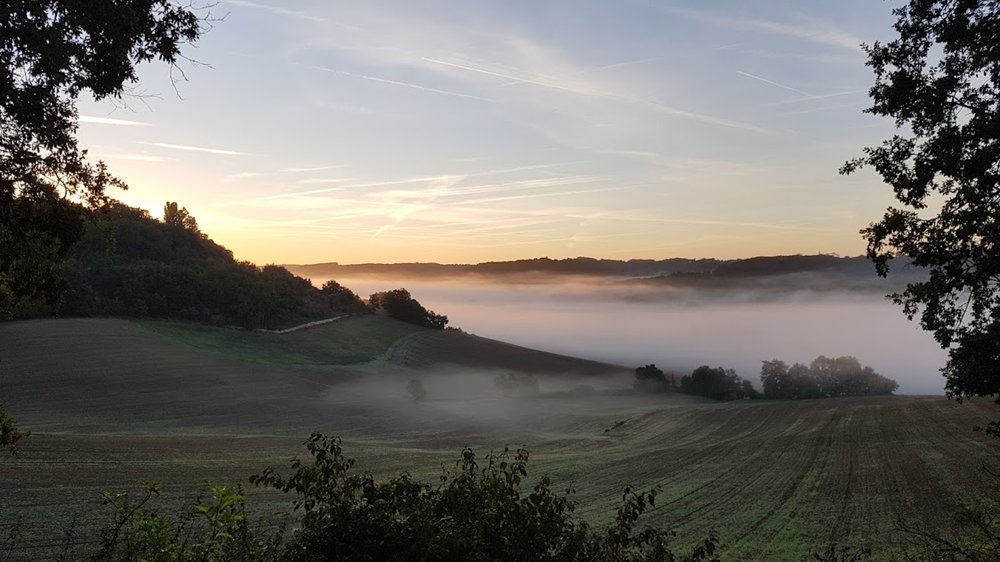 mist 14.56.43.jpg