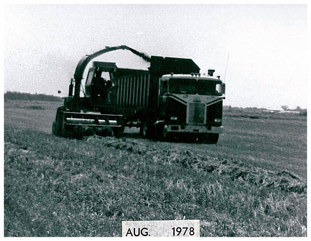 InFieldAug1978.jpg