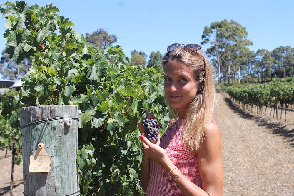 wineries-australia.jpg