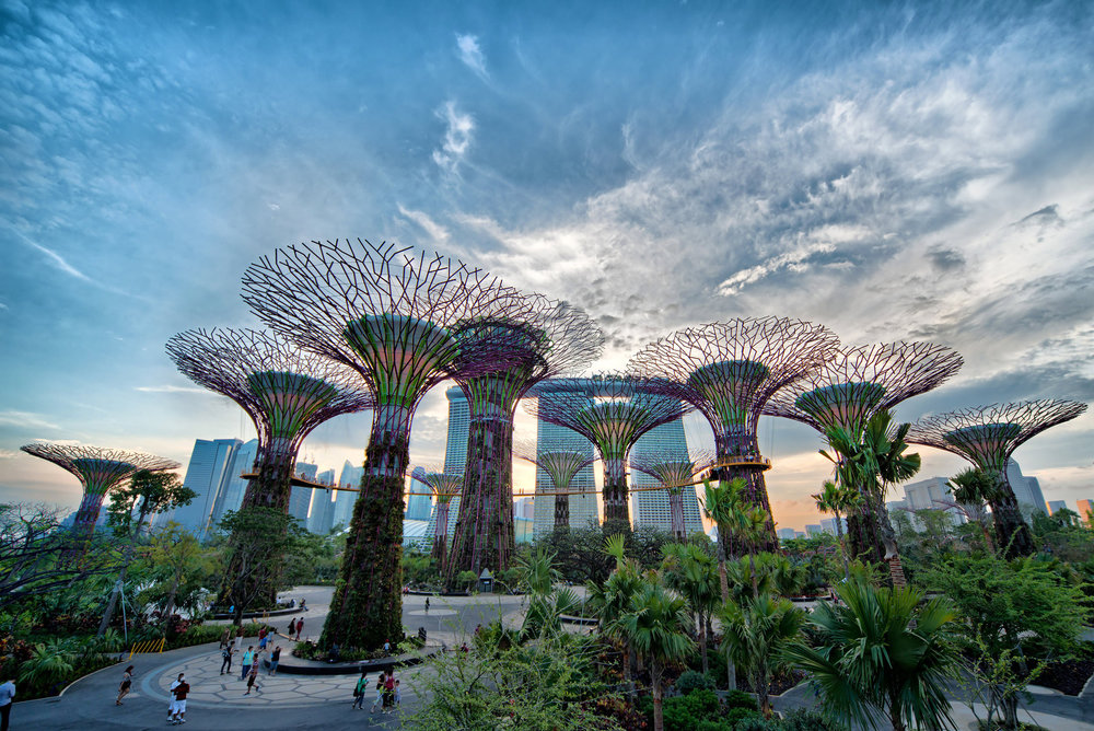 gardens by the bay.jpg