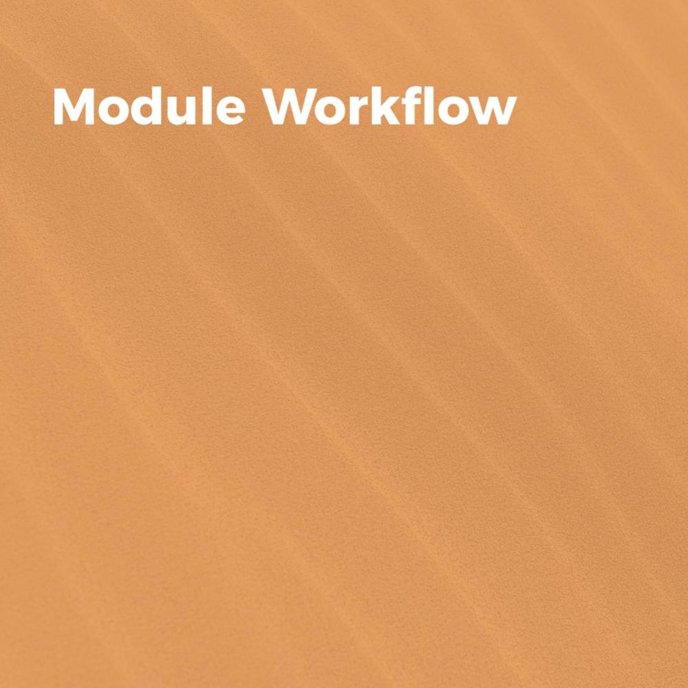 ModuleWorkflow.png
