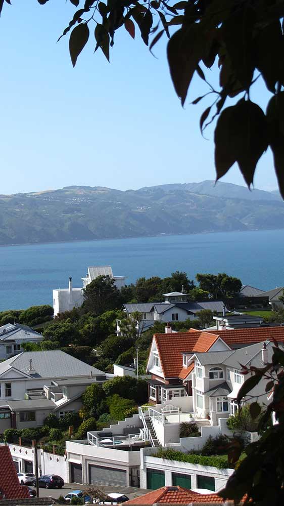 View-of-Roseneath-from-Palliser-Road.jpg
