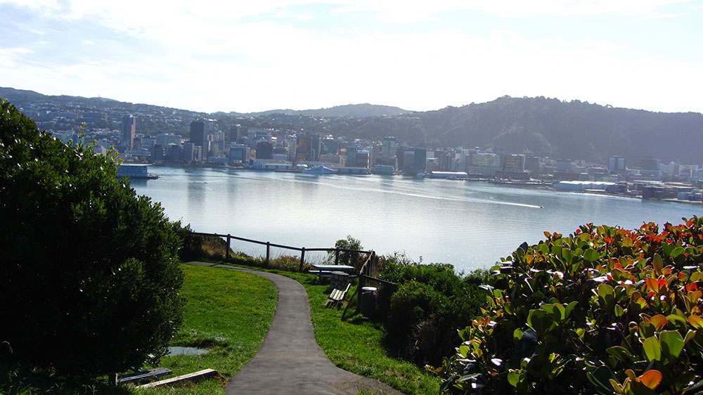 The-Crescent-Play-area-overlooking-Wellington.jpg