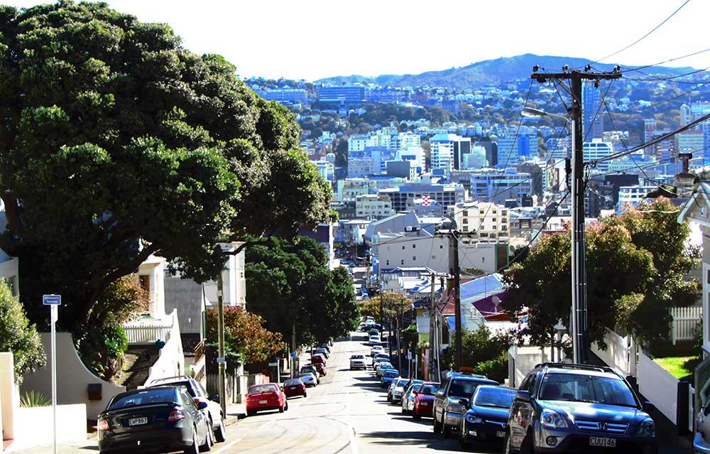 Street-in-Mount-Victoria-Wellington-1000.jpg