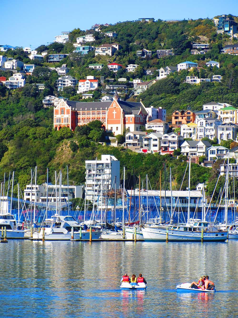 People-on-Pedalo-Boats-in-Wellington-harbour---1000.jpg