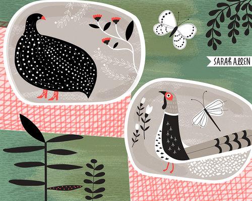 sarah_allen_illustrattion_guineafowl_pheasant.jpeg