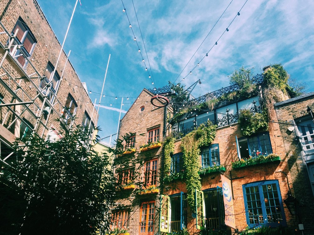 The seating in Neal's Yard is colorful and tranquil.