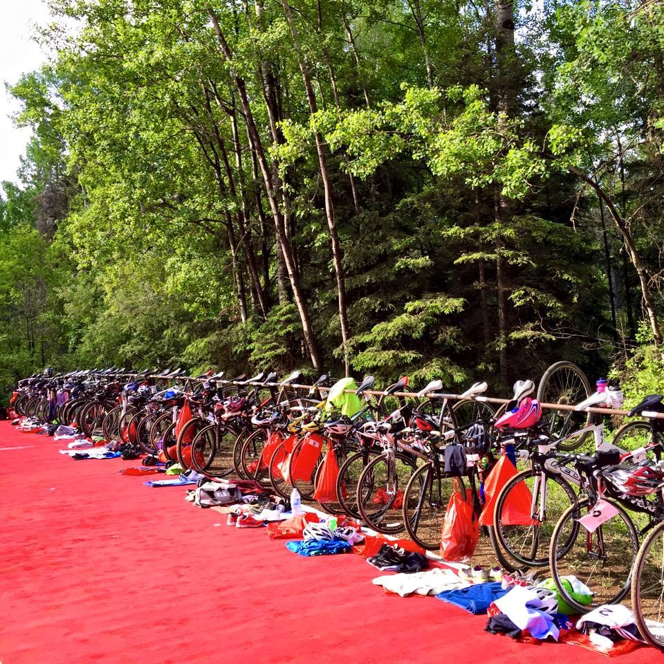 Bikes in a Row.jpg
