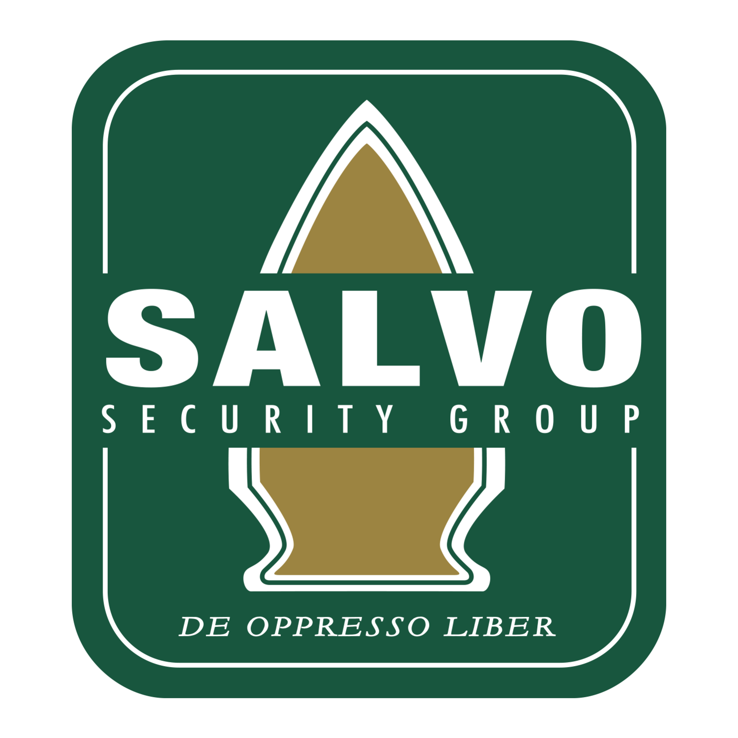 Salvo Security Group