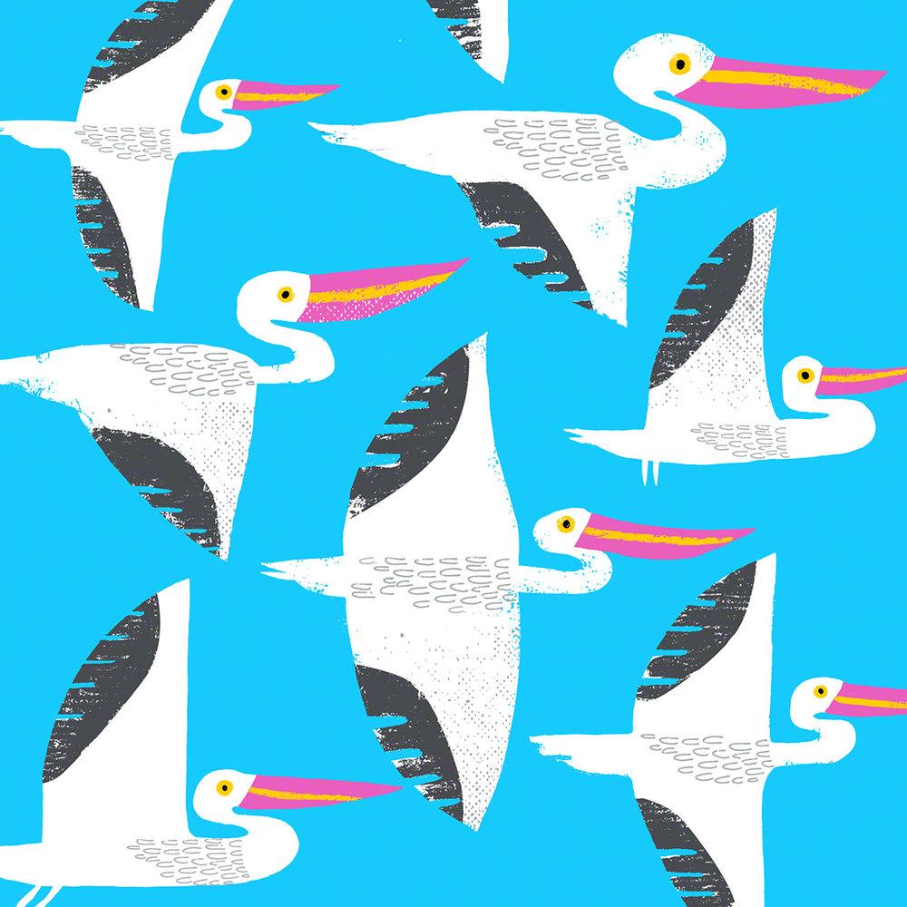 SineadHanley_Pattern_07_pelicans.jpg