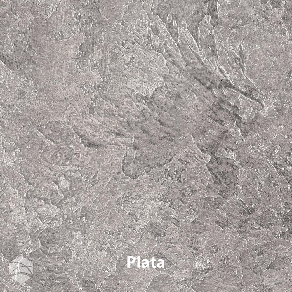 Plata_V2_12x12.jpg
