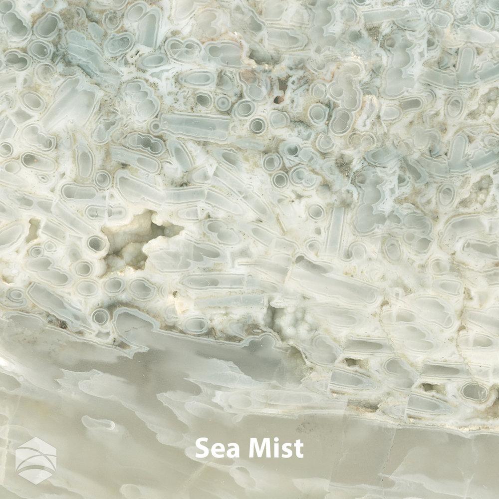 Sea Mist_V2_12x12.jpg
