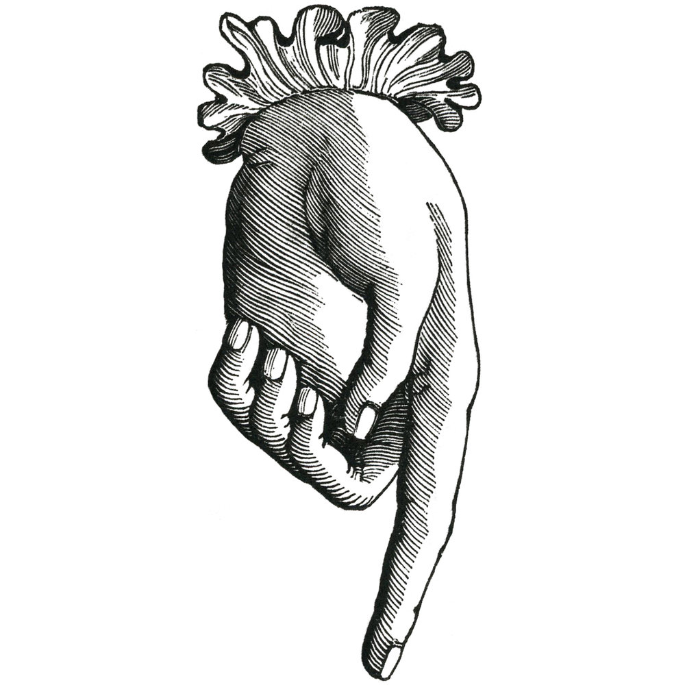 waking up in paris clarissa grace personal style online victorian hand illustration