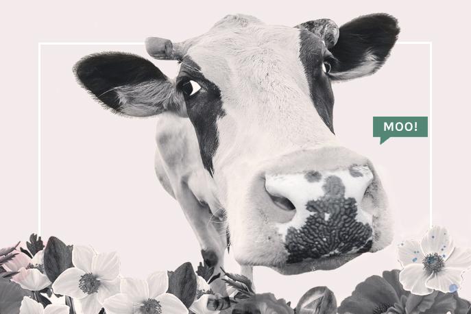 waking-up-in-paris-clarissa-grace-personal-style-coach-online-mum-entrepreneur-fashion-cow.jpg