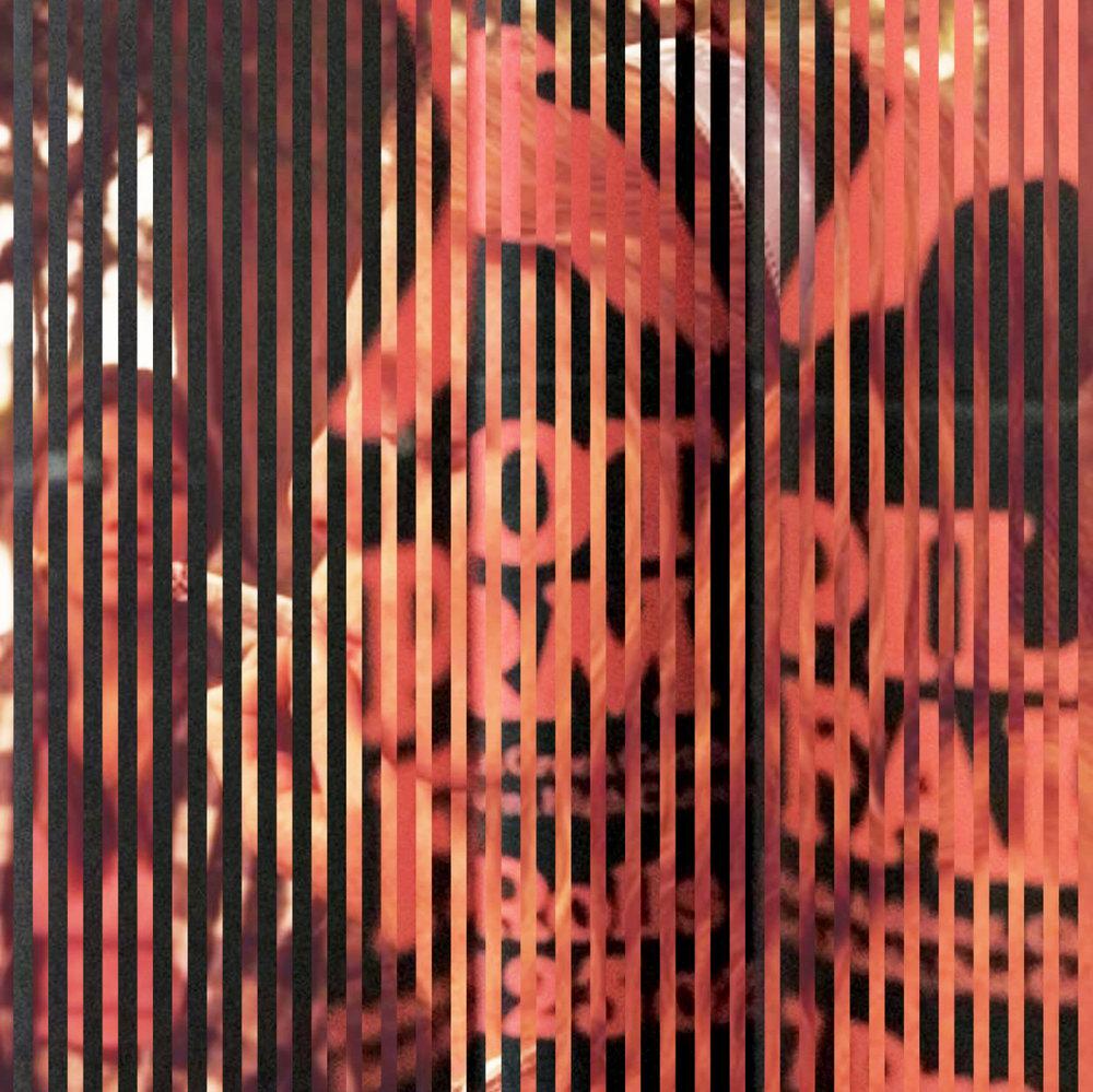pre_roll_2.jpg