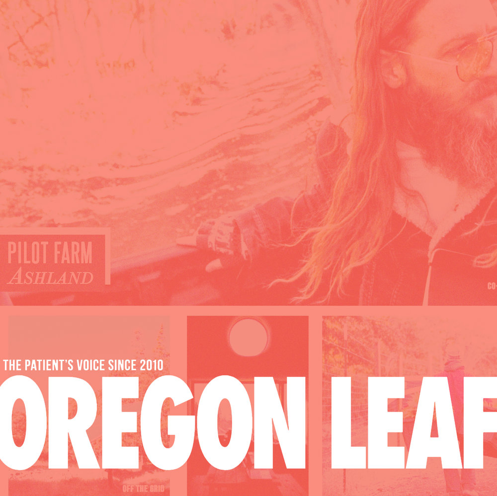 oregon_leaf_v1.jpg