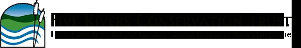 logo-lg-2.png
