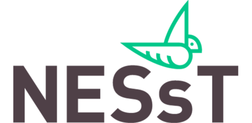 Image result for nesst logo