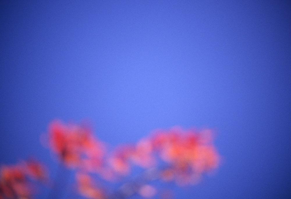 2011_APRIL_011.jpg