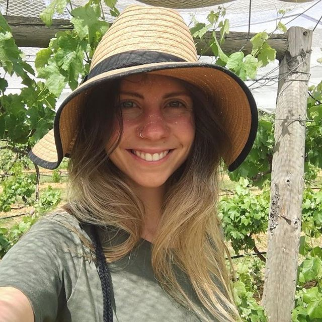 🍇🍇 Ones to Watch 🍇🍇 Winemaker @jasminewakely makes wine under her le timbre label and it sells out every year. Later this month she is releasing a quartet of wines of the 2018 vintage. Don't miss these 🍷🍷🍷🍷 Find out more about Jasmine and lots of other #fullybookedwomen on our website #onestowatch link in bio