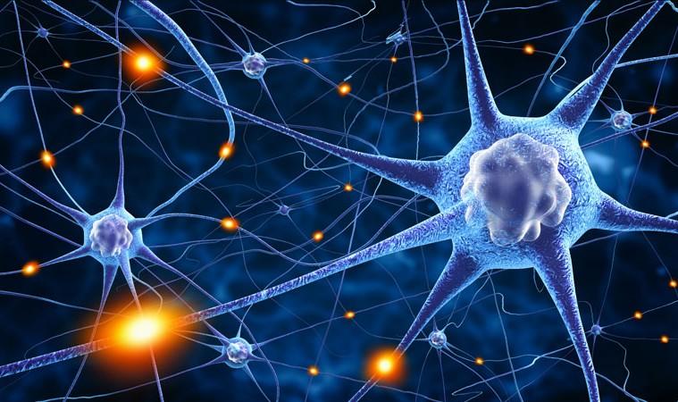 nurobodi-neuro-brainwave-entrainment-binaural.jpg