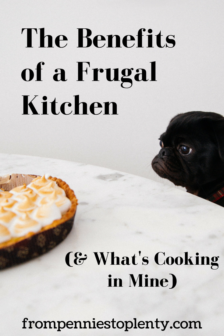 Benefits of A Frugal Kitchen 2