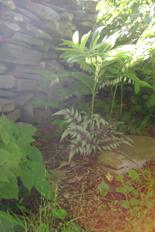 Gate Garden