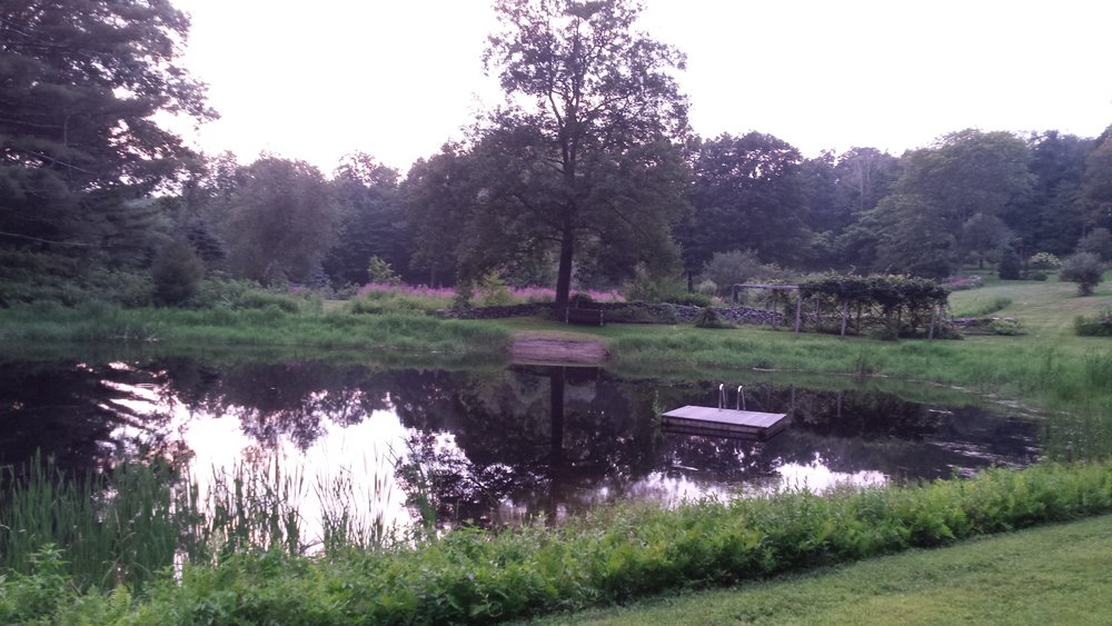 Barnes Pond 2 8.17.jpg