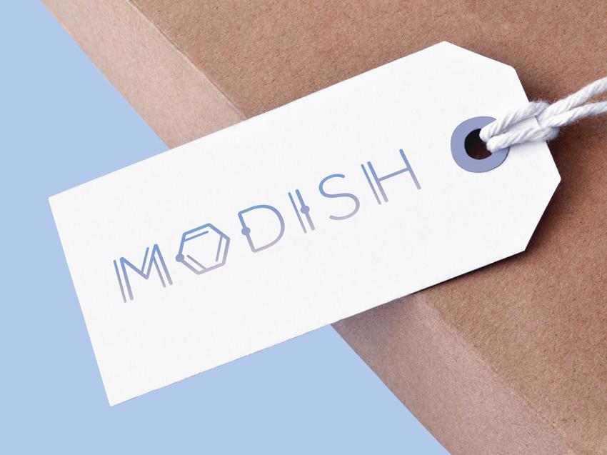modish-tag-mockup.png