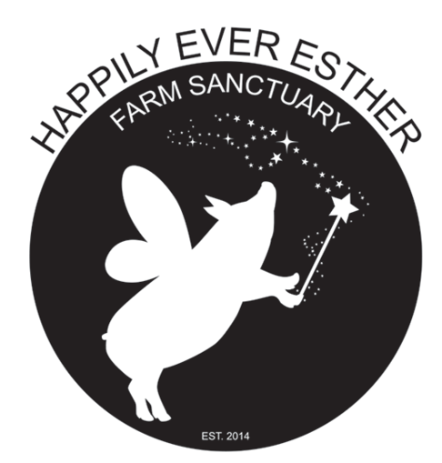 Happily Ever Esther Farm Sanctuary
