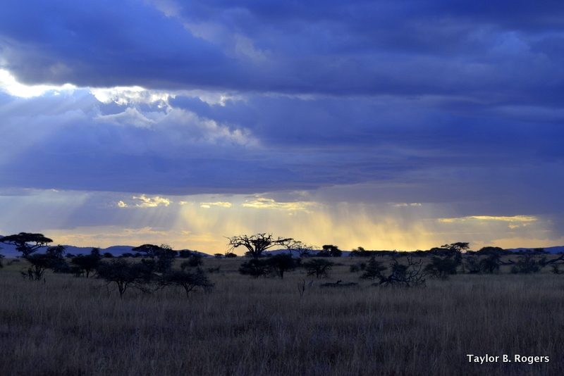 Sunset at the Serengeti