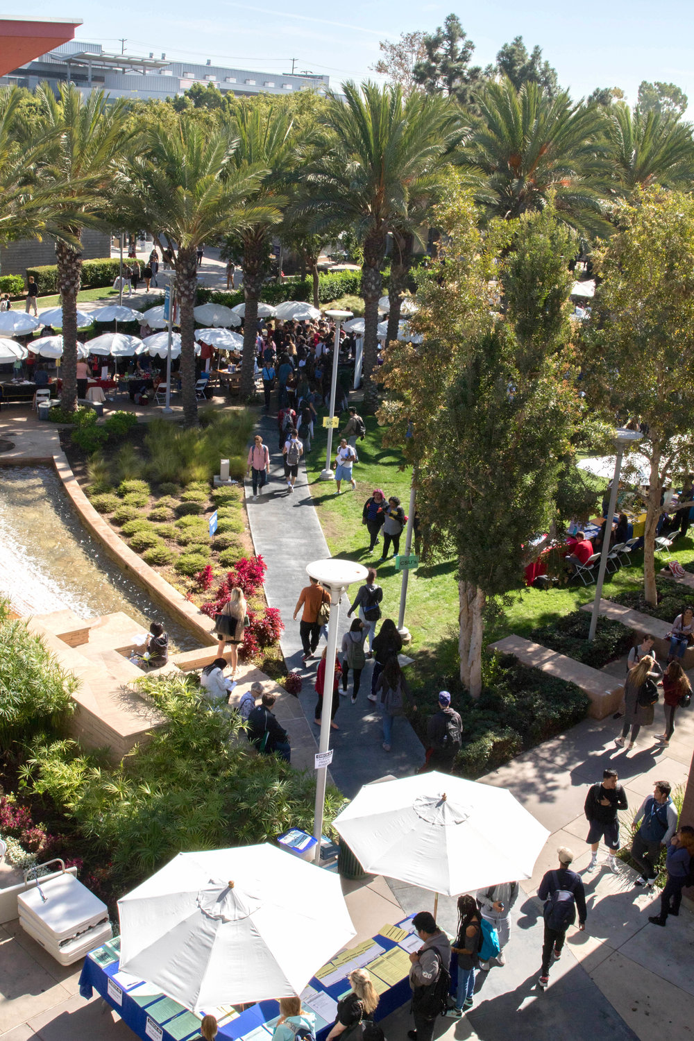 Students fill the Santa Monica College Main Campus Quad on October 10 2017 to scope out potential schools for them to transfer to as part of Santa Monica Colleges Annual College Fair. (Photo By: Zane Meyer-Thornton)
