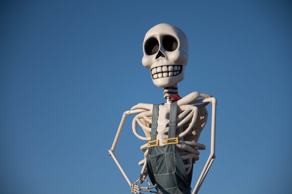 A large Mr. Bones statue at the Mr. Bones Pumpkin Patch in Culver City, Calif. on October 15th, 2017.
