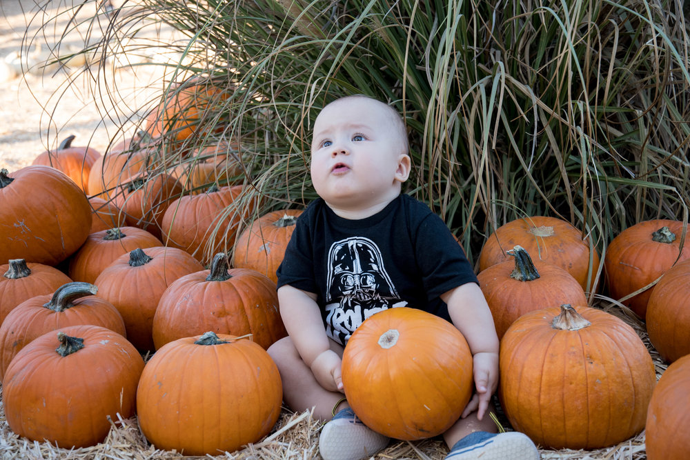 Child's first birthday being spent at the Mr. Bones Pumpkin Patch in Culver City, Calif. on October 15th, 2017.