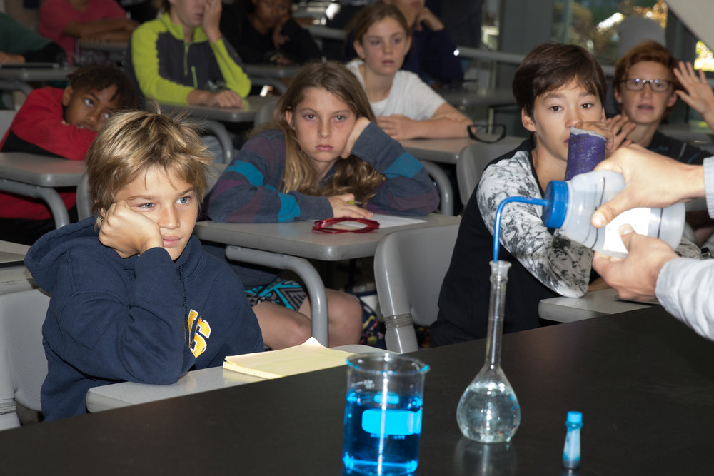 Students From John Adams Middle School get a demonstration of the experiment they will be doing later as part of the Santa Monica College Chemistry Club Outreach Event. The event took place on November 18, 2017 at the Santa Monica College Main Campus in Santa Monica, Calif. (Photo By: Zane Meyer-Thornton)