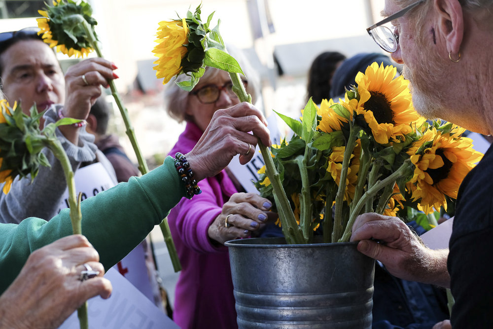 Sunflowers were passed out to represent Palestian's who died during The Great March of Return in Santa Monica, California on May 18, 2018. The sunflowers signify hope and resilience.  (Jayrol San Jose/Corsair Contributor)