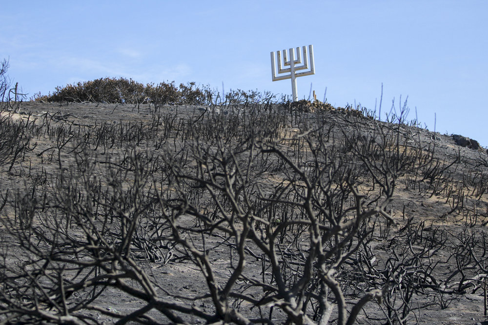 A giant Menorah, marking the location of Camp Hess Kramer and Gindling Hilltop, escapes damage from the Woolsey fire and remains standing on November 13, 2018 on a hillside known as Rabbi Alfred Wolf Inspiration Point in Malibu, Calif. Rabbi Alfred Wolf joined the Wilshire Boulevard Temple and helped found both camps in 1952. The camp provided a space that was nurturing to the Jewish community and identity. The camp also became an ally to the Chicano community and hosted the Chicano Youth Leadership Conference (CYLC) that helped nurture the Chicano movement. (Jose Lopez)